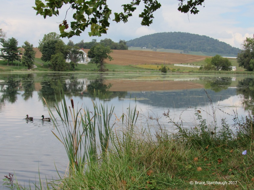 Silver Lake, Dayton VA