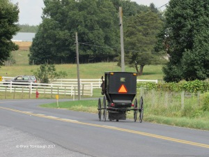 Old Order Mennonite horse and buggy, Dayton VA
