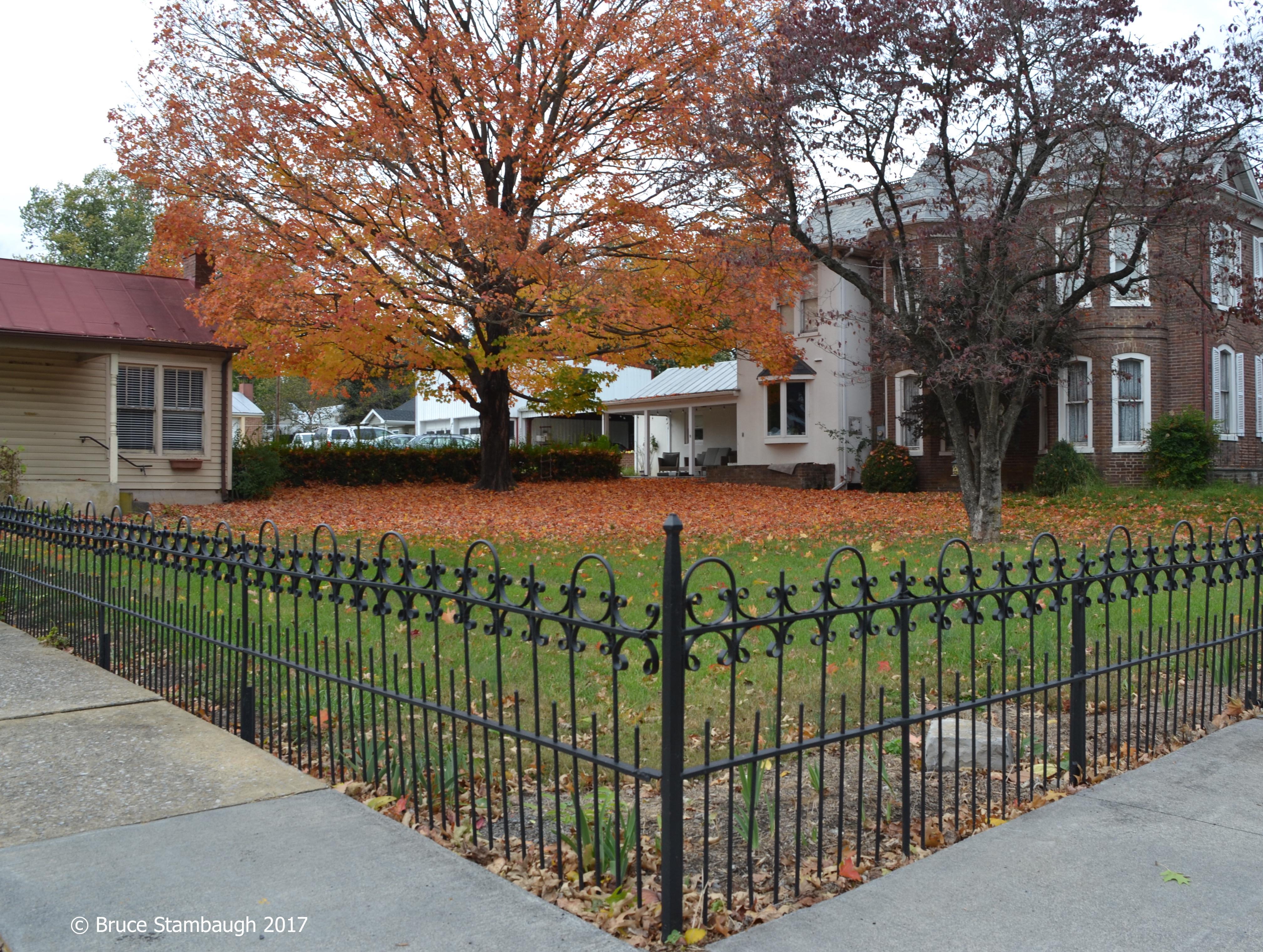 autumn leaves, sugar maple leaves, iron fence