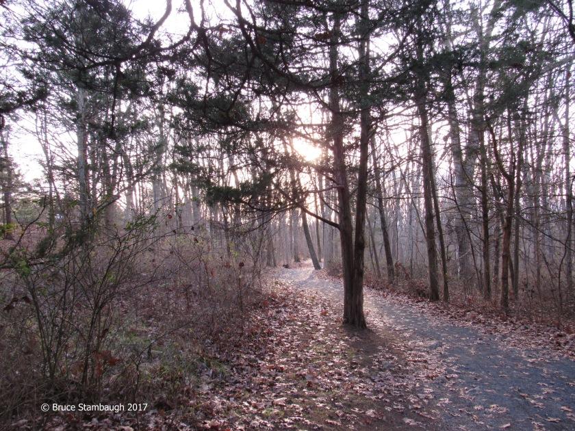 park, Harrisonburg VA