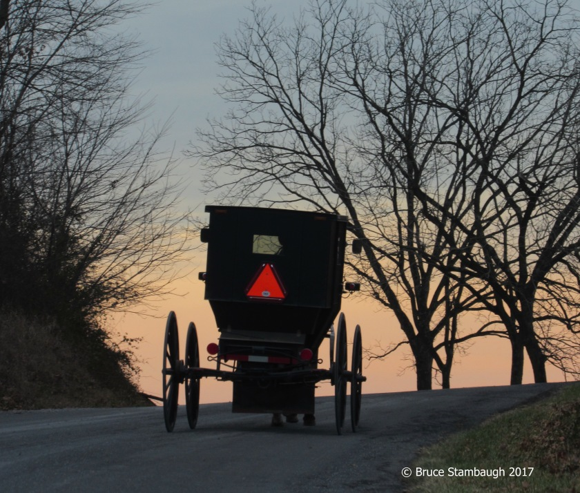 Old Order Mennonite buggy, Virginia, Shenandoah Valley