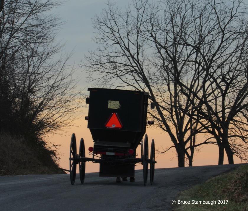 Old Order Mennonite buggy, Virginia, Shenandoah Valley
