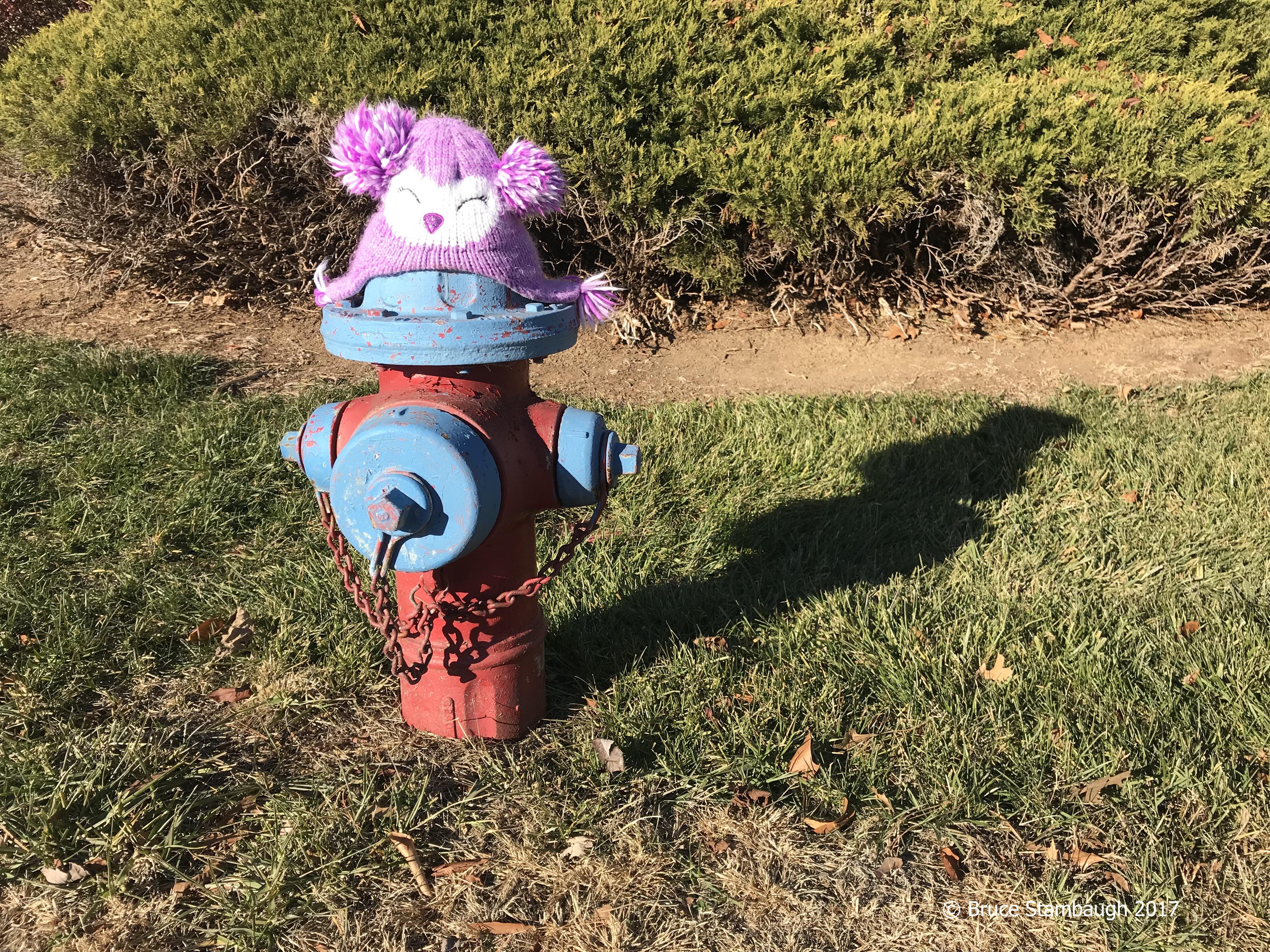 lost hat, fire hydrant, repurpose