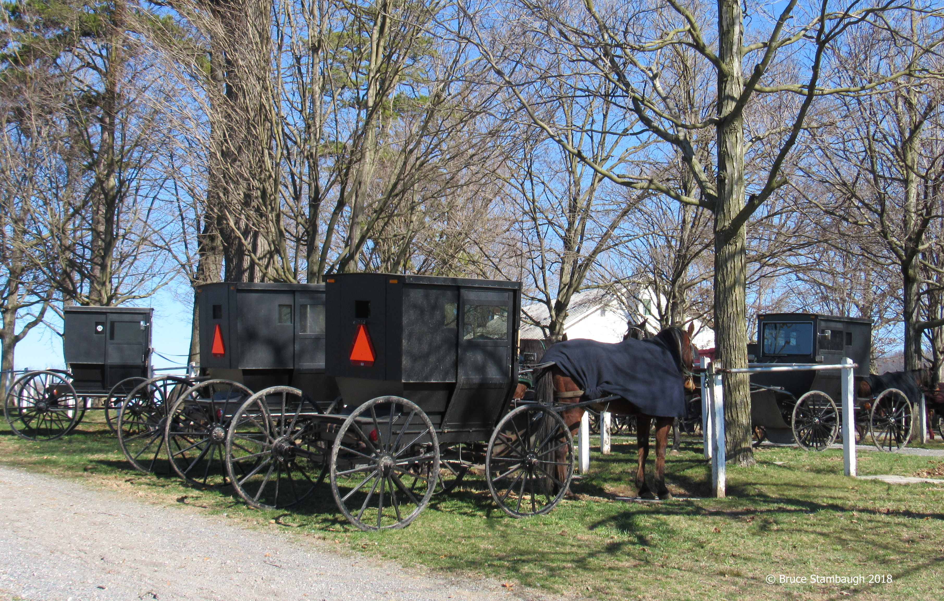Old Order Mennonites, Rockingham Co. VA