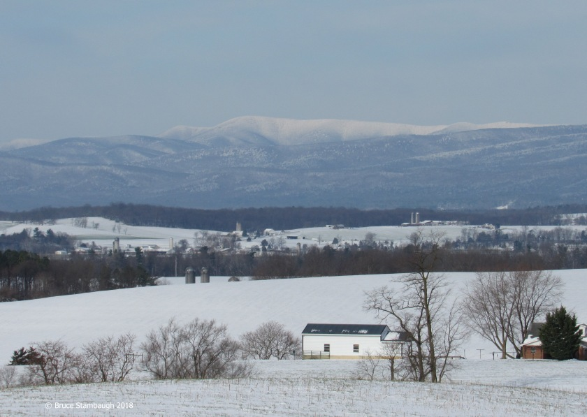 snowstorm, Virginia