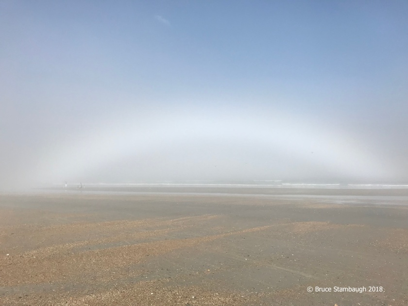 fogbow, Little Talbot Island SP FL