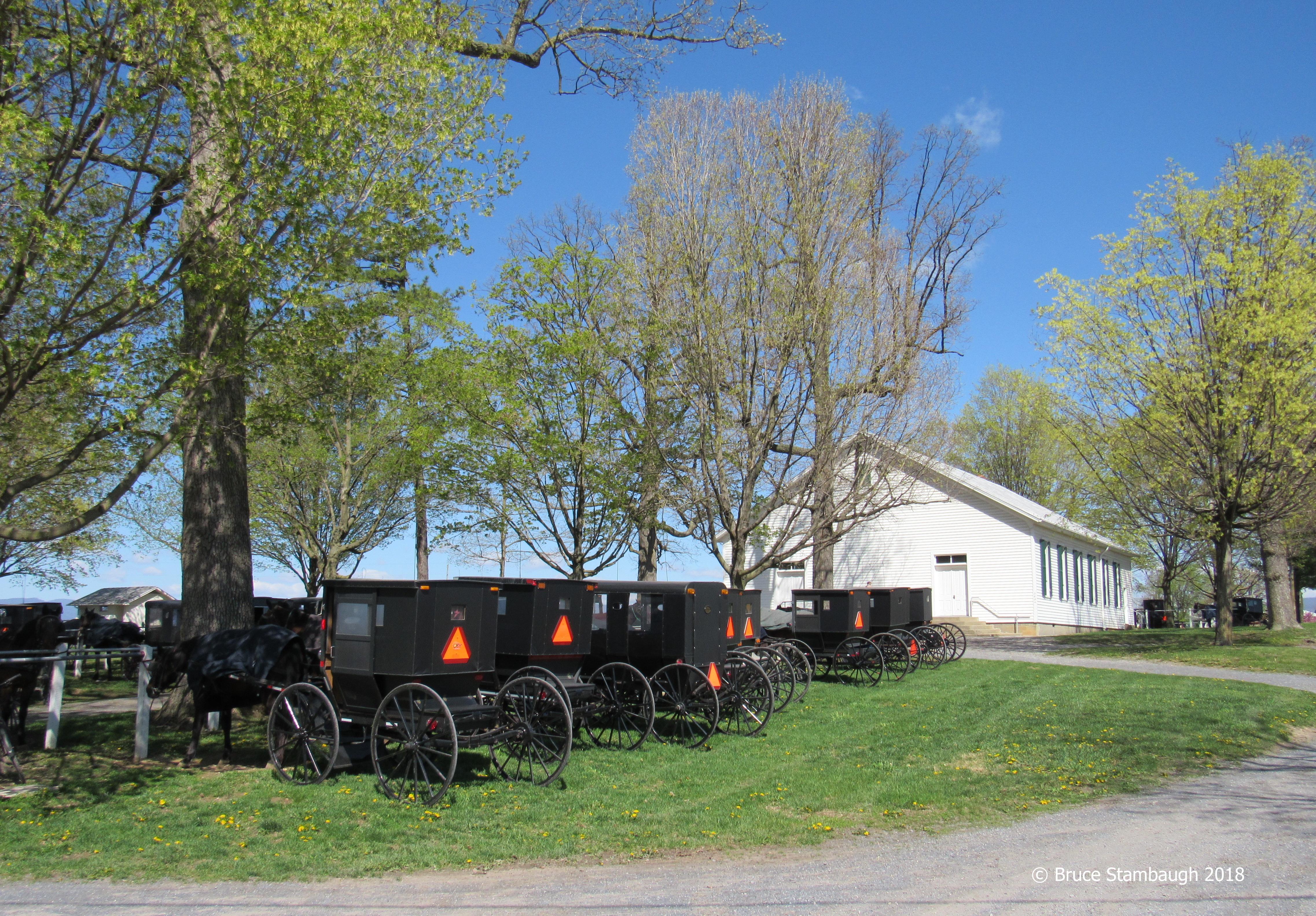 Old Order Mennonites, Shenandoah Valley