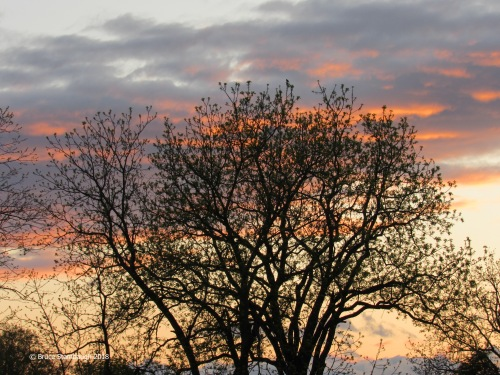 Shenandoah Valley, sunset