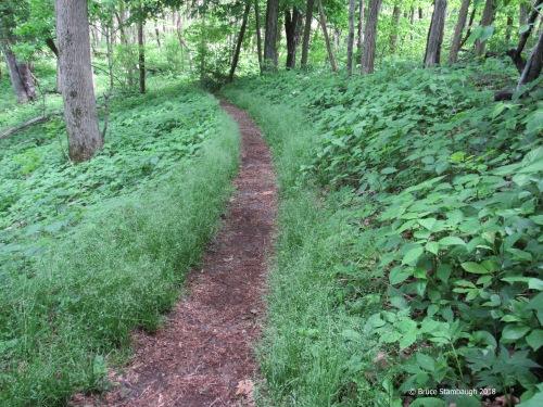 Appalachian Trail, Rock Spring Trail