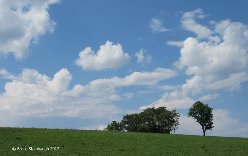 pasture field, cumulous clouds