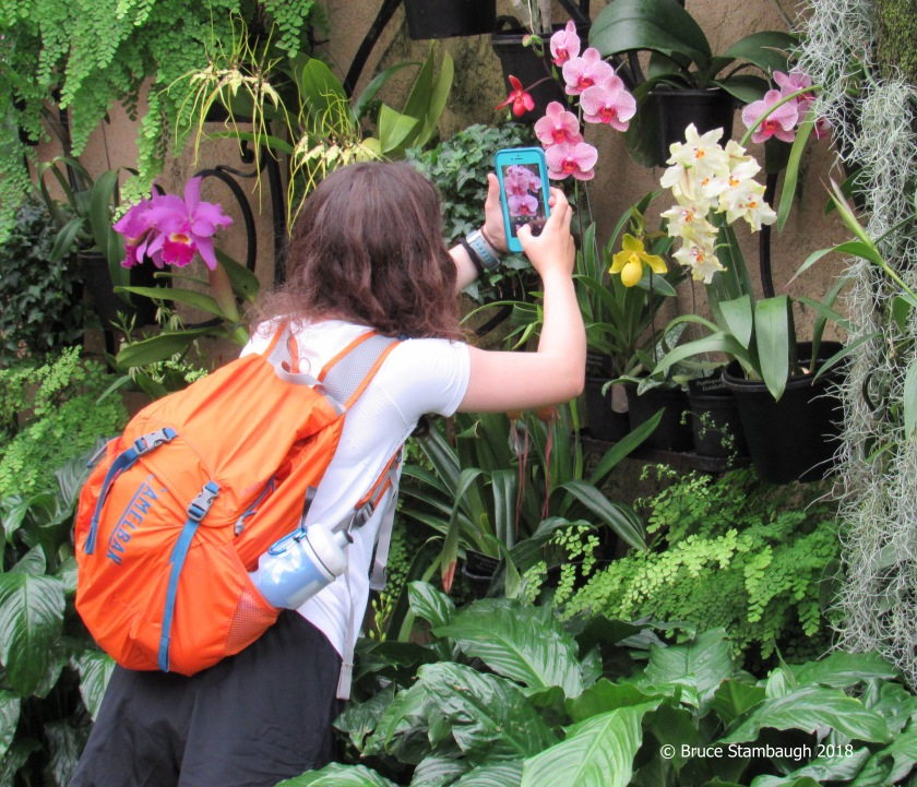 young photographer, Longwood Gardens, seeing beauty