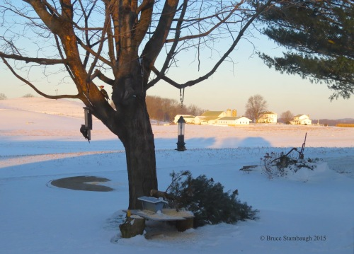 Ohio's Amish country, winter, Holmes Co. OH