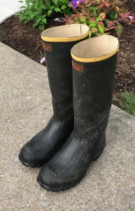 rubber boots, gumboots