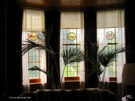 Windows and ferns.