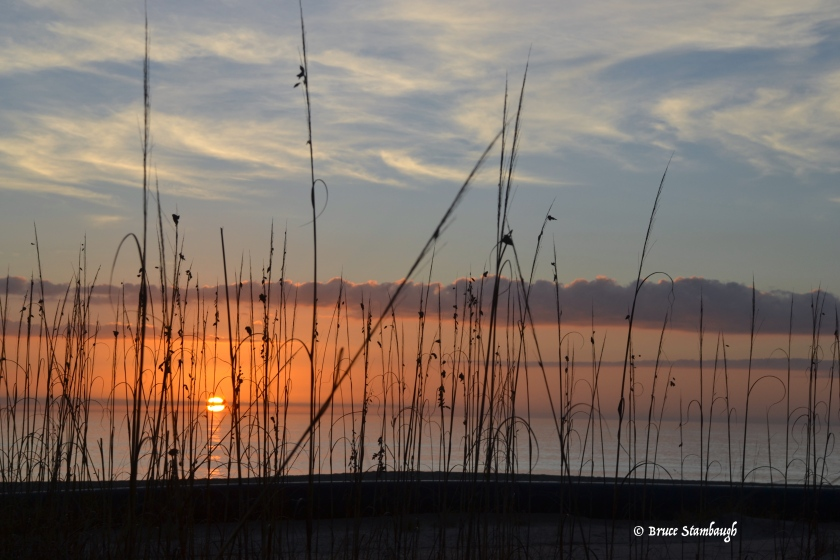 sunrise, sea oats