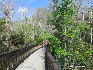 Everglades NP, friendly couple