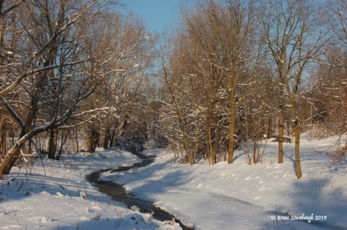 stream in winter, Holmes Co. OH